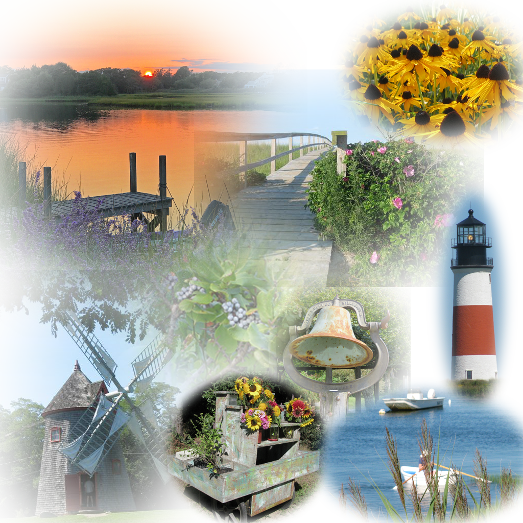 montage of late summer photos taken on Cape Cod